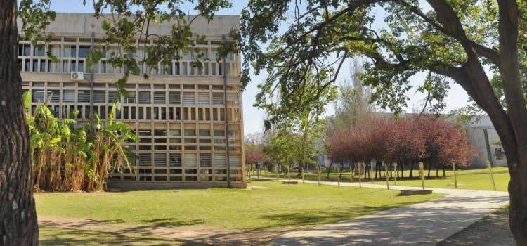 Sector posterior del edificio de la Facultad en un día soleado