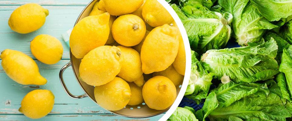 Limones y lechuga