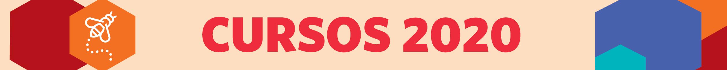 SE 2020